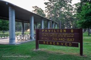 Pavilion 9 - 1