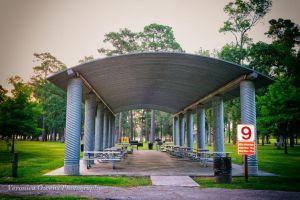 Pavilion 9 -2